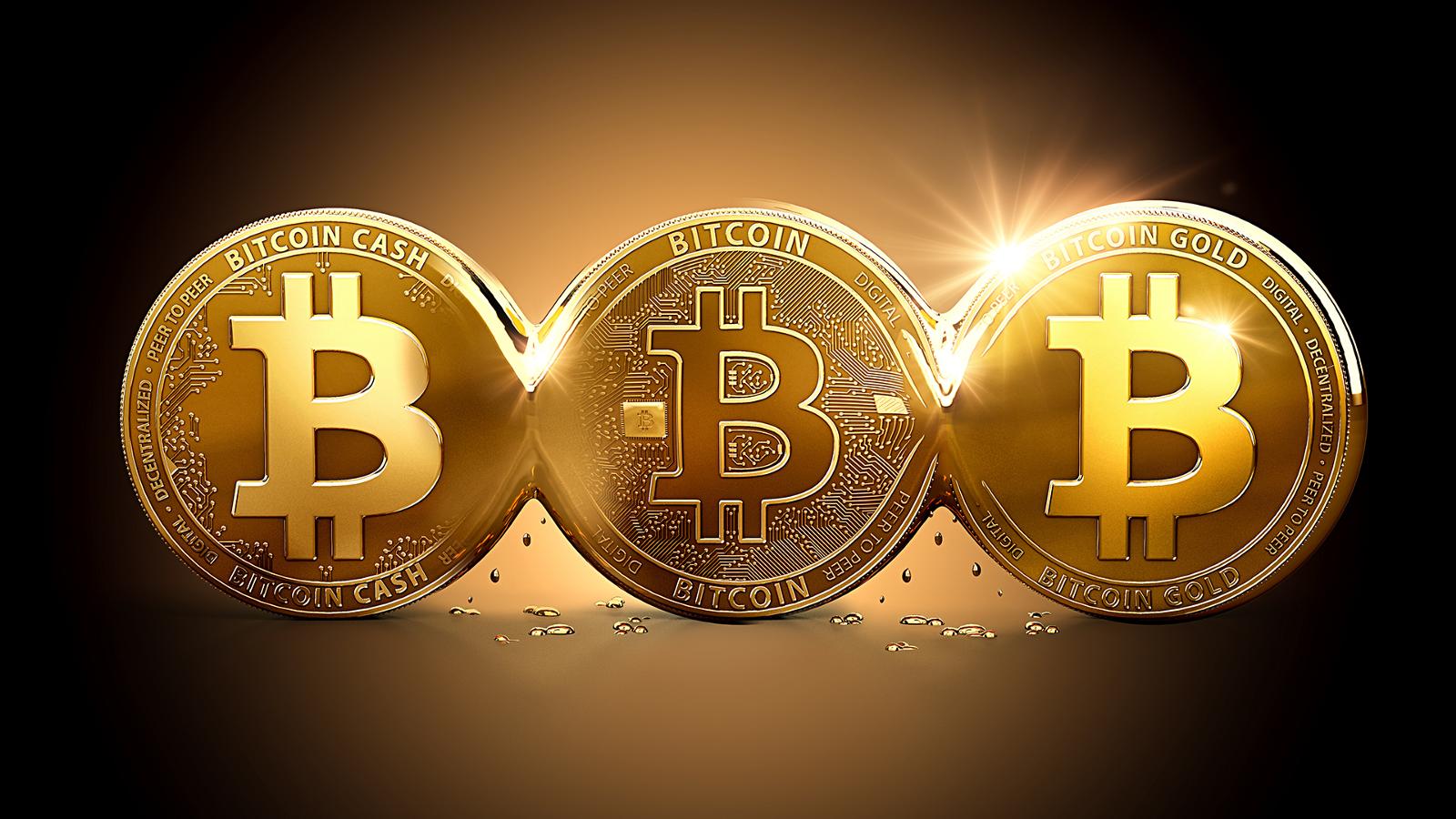 cum să faci bitcoin într- un an