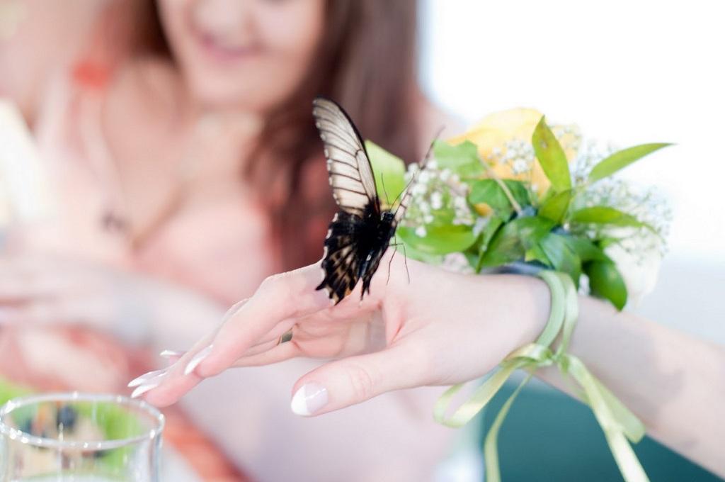 Strategia fluture privind opțiunile)