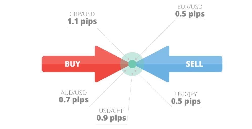 Schimb Valutar cu Tavex