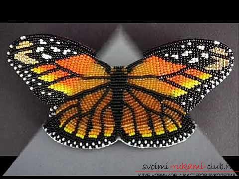 diagramă opțiune fluture