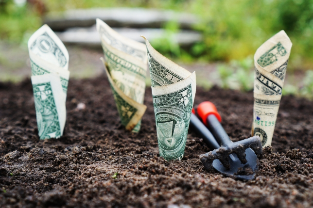 cum să câștigi bani pe internet modalități dovedite de câștig