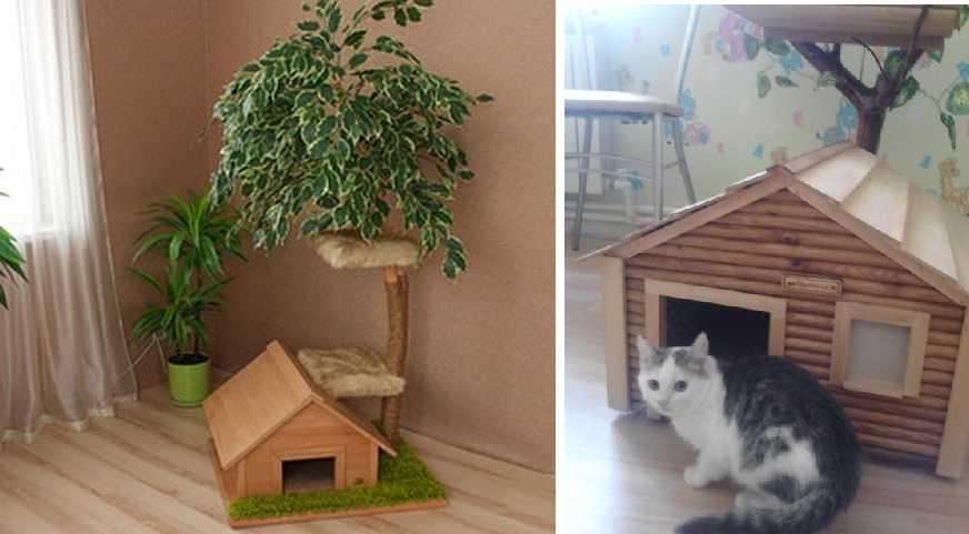 Adorabile modele de manichiură pentru pisici - Confetissimo - blogul pentru femei