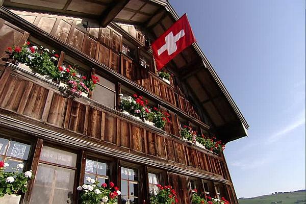 opțiune binară în elveția