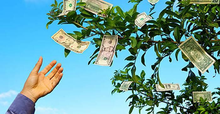 cum să faci bani mari fără să faci nimic