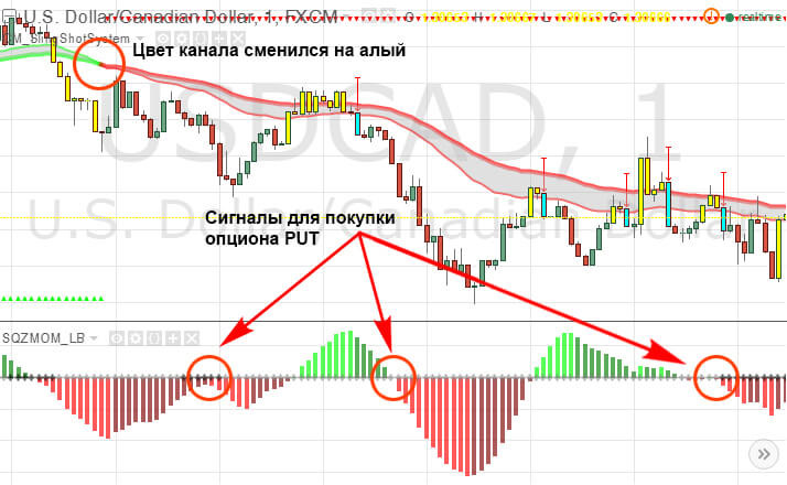 tendința sistemului de tranzacționare)