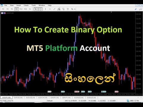 opțiuni binare prin meta trader 5