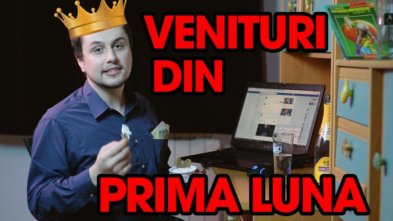 câștigând bani pe internet castor viclean)