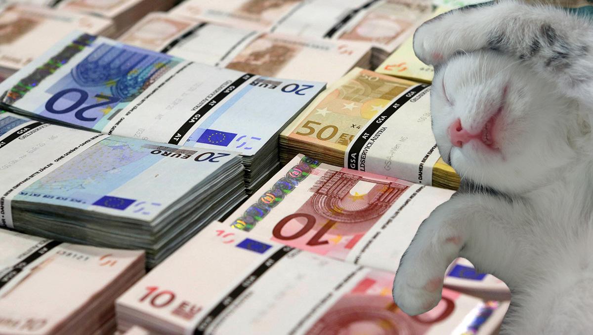 cum să faci bani prin casă)