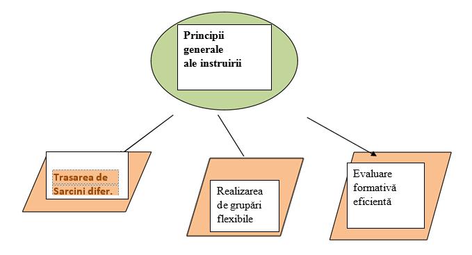 opțiuni strategii și principii